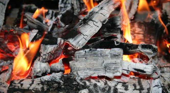 carbone di legna