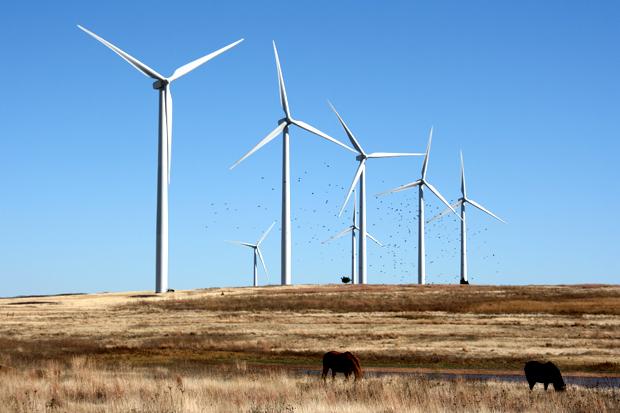 Turbine Eoliche Legno