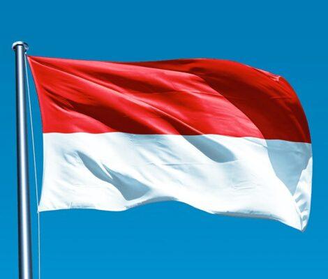 indonesia carbone